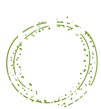 Stay present to EXPERIENCE