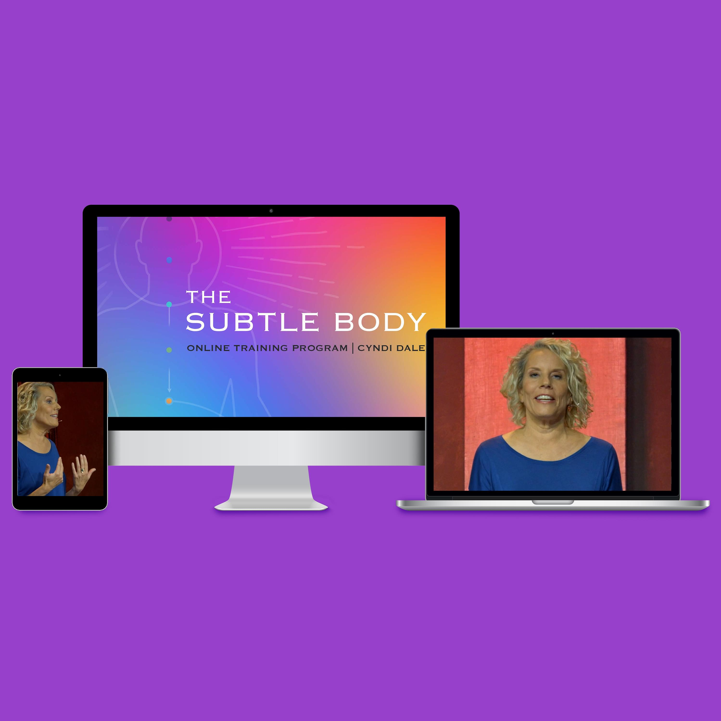 The Subtle Body Online Training  With Cyndi Dale On Computer Devices